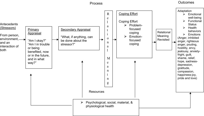 Model of Stress and Coping
