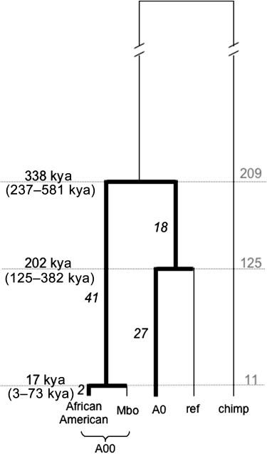 Imagen a tamaño completo (28 K)