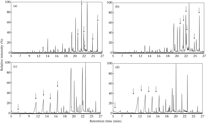 Total ion chromatograms of two samples from two closely related adult female ...