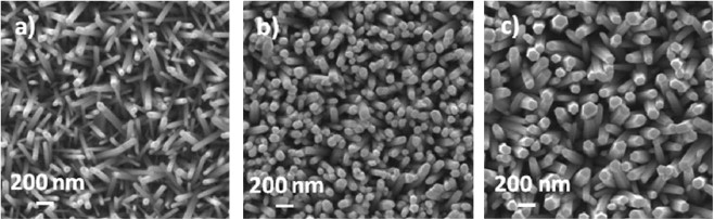 Top-view SEM micrographs of ZnO nanowires electrodeposited on the seeded ...