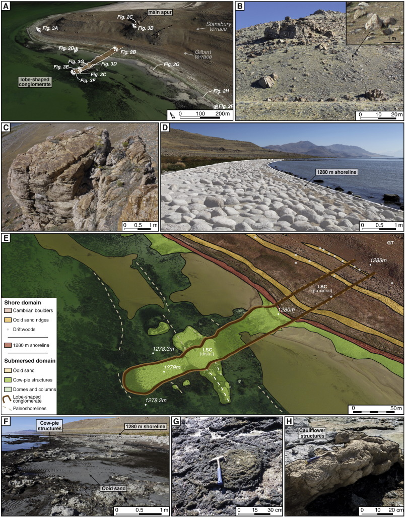 Enhanced Development Of Lacustrine Microbialites On Gravity Flow - Epoc maps illistrating us history