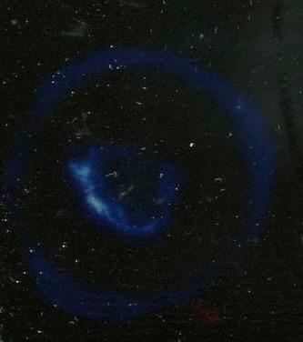 Full-size image (31 K)