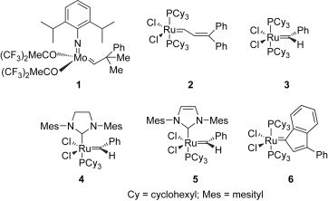 Catalysts   Free Full Text   Acyclic Diene Metathesis  ADMET     A major step forward was provided by acyclic diene metathesis  ADMET   polymerization     a technique