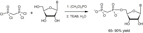 A Direct Method for the Synthesis of Nucleoside 5′-Methylenebis(phosphonate)s from Nucleosides