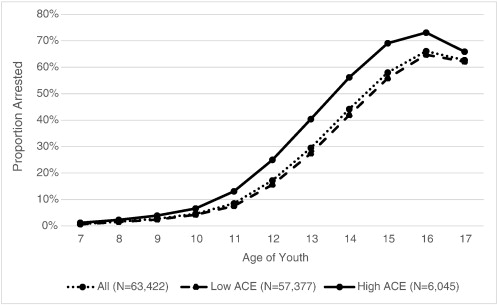The Relationship between Adverse Childhood Experiences (ACE) and ...