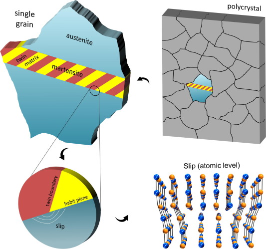 Microstructure in real-life SMA components is polycrystalline in nature, where ...
