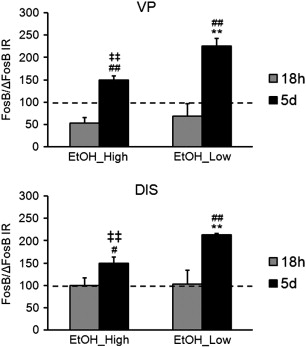 Expression of FosB/DeltaFosB at 18h and 5days of withdrawal period in EtOH_High ...