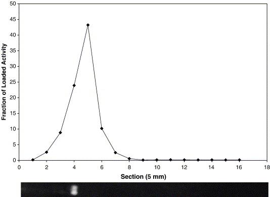Gel Electrophoresis Graph