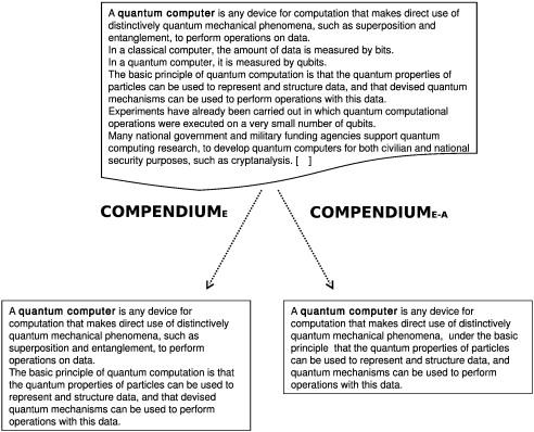 Apdo english term paper