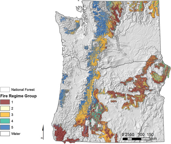 Assessing the impacts of federal forest planning on wildfire risk