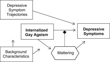 Conceptual framework.