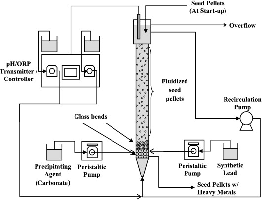 Schematic Diagram Of The Fluidized Bed Reactor