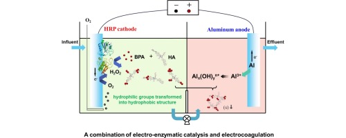 A combination of electro-enzymatic catalysis and ...