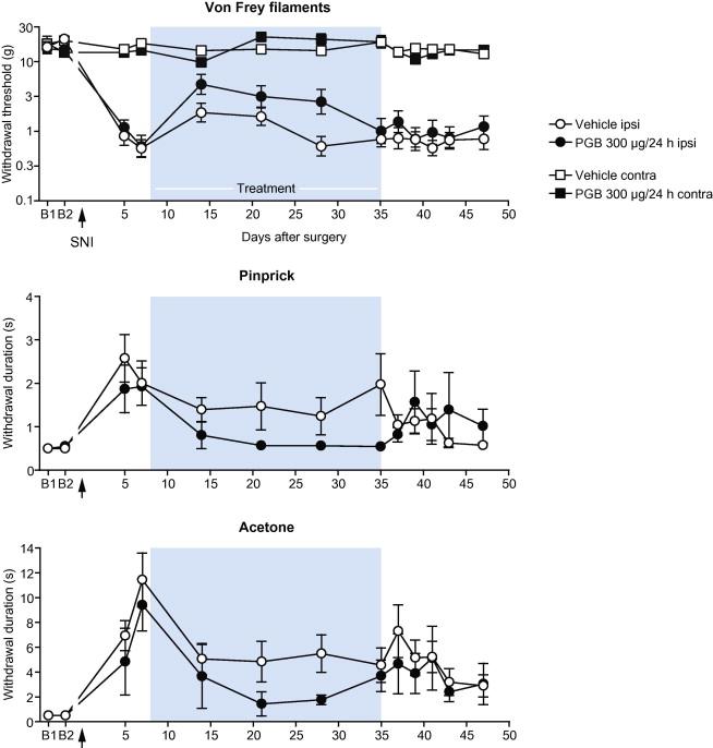 s n methyl pregabalin neuropathic pain