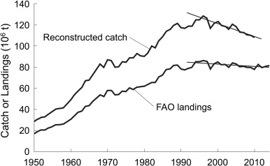 Comments on faos state of world fisheries and aquaculture sofia 2016 fig 1 time series of global reconstructed marine fisheries sciox Gallery