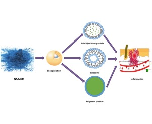 Nanostructured Lipid Carrier  The second Generation of Solid Lipid  Nanoparticle   International Journal for Pharmaceutical Research Scholars   IJPRS