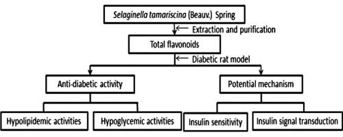 ... FBG, fasting blood glucose;; OGTT, oral glucose tolerance;; HbA1c, ...