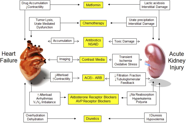 Nsaids And Heart Failure Mechanism
