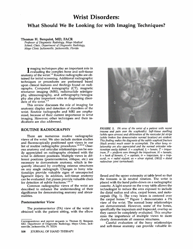Perception Lecture Notes  Neuroimaging Figure