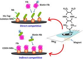 Biosens Bioelectron. 2013;52C:255-260