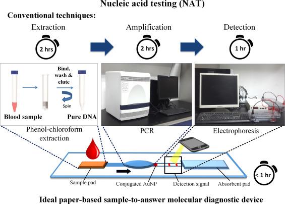 Paper-based sample-to-answer molecular diagnostic platform for ...