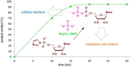Synthesis of nucleoside phosphosulfates