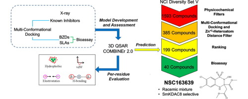 Structural Insights of SmKDAC8 Inhibitors: Targeting Schistosoma Epigenetics Through a Combined Structure-Based 3D QSAR, in vitro and Synthesis Strategy