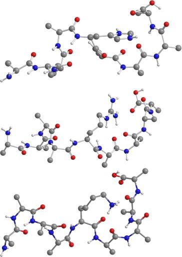 Arginine Protonated