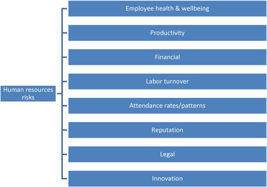 A risk perspective on human resource management: A review and ...