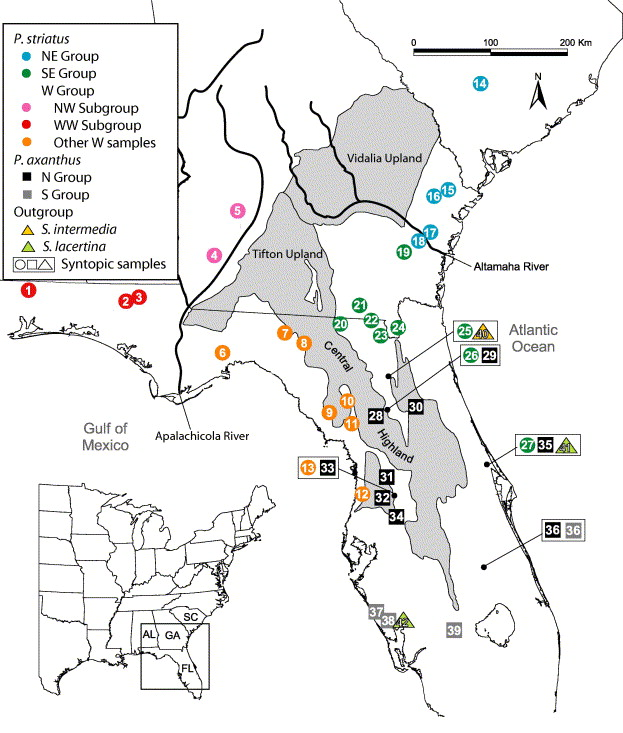 Map Of The Southeastern Us For The 39 Samples Of Pseudobranchus And Three