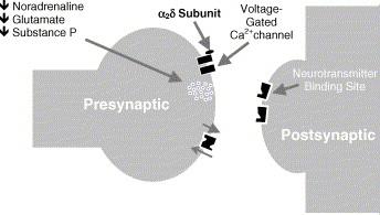 pregabalin dose epilepsy