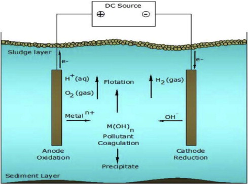 Removal of Cr(VI) ions from waste water by electrocoagulation ...
