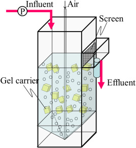 Schematic of the 1,4-dioxane removal reactor used in the continuous feed ...