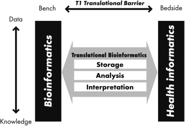 "Translational Bioinformatics in contextThe Y axis depicts the ""central dogma"" of ..."