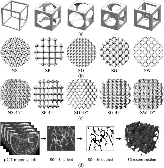 Design and properties of 3D scaffolds for bone tissue engineering