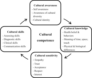 Cultural competence and dissertation
