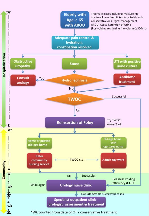 Trial without catheter programme model in O&T. AROU = acute retention of urine; ...