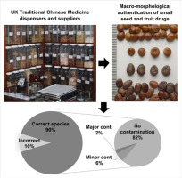 Macroscopic authentication of chinese materia medica cmm a uk graphical abstract fandeluxe Choice Image