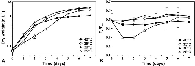 Growth and hydrogen production of outdoor cultures of Synechocystis PCC 6803