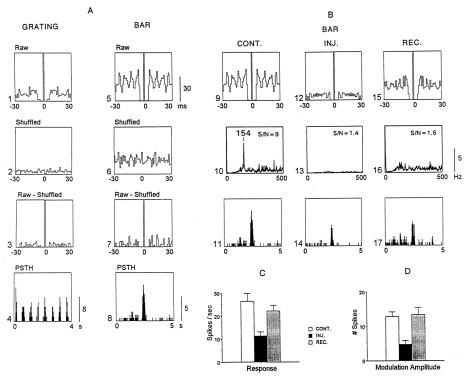 the visually responsive neuron molotchnikoff s ono t hicks t p