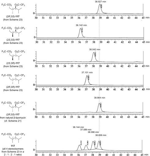 The Tetramic Acid Antibiotics α- and β-Lipomycin: Total