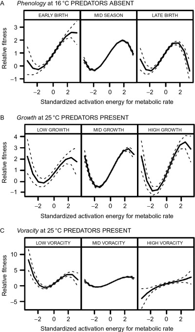 Climate Change and Eco-Evolutionary Dynamics in Food Webs