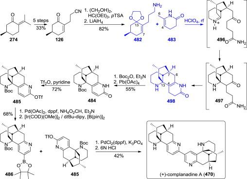 Development of matrix metalloproteinase-13 inhibitors – a.