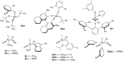 The Influence Of Structure On Reactivity In Alkene Metathesis