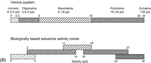 Inert And Labile Complexes Slideshare