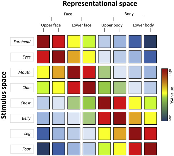 Similarity Matrix - an overview | ScienceDirect Topics