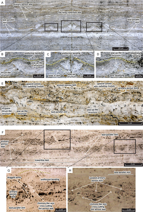 Early or Late Structures in Thermogene Travertines? Open-Air Lessons