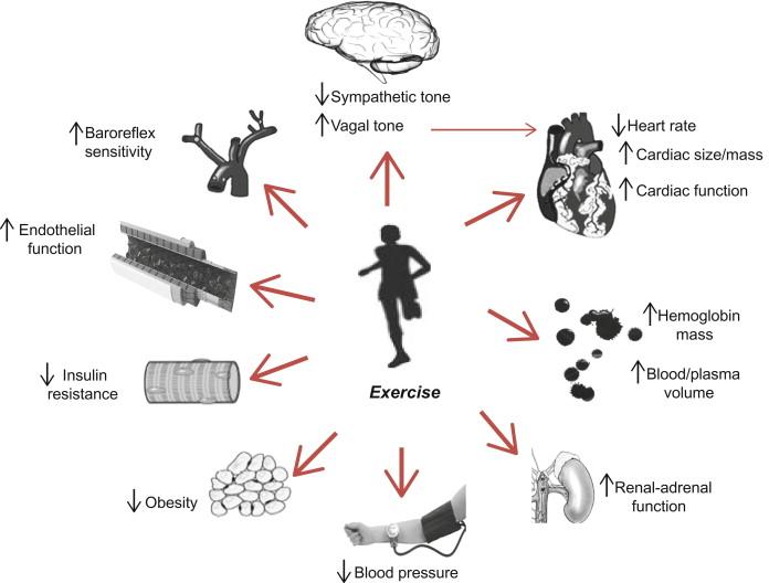 propranolol side effects in women