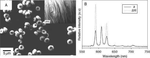 Processable Aqueous Dispersions Of Graphene Nanosheets Ebook