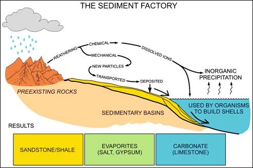basic sedimentary rock properties sciencedirect rh sciencedirect com sedimentary rock diagram ks2 sedimentary rock ternary diagram